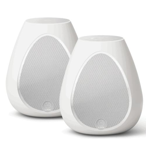 Linn Series 3 Partner Speaker