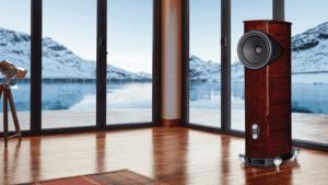 Fyne Audio Demonstration